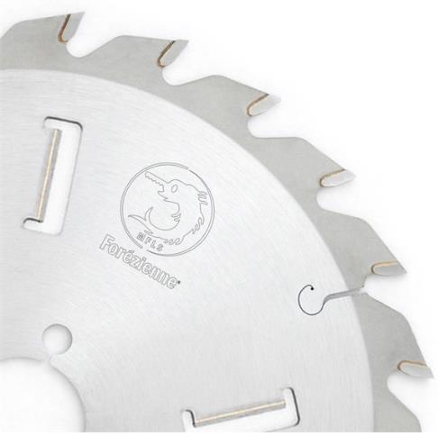 Picture of Lame circulaire Carbure Forezienne LC4R4502418 Ø450 Al:30 Ep:4.6/3.2 Z24 avec 4 racleurs internes